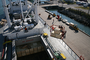 Port Canaveral Cargo Discharge